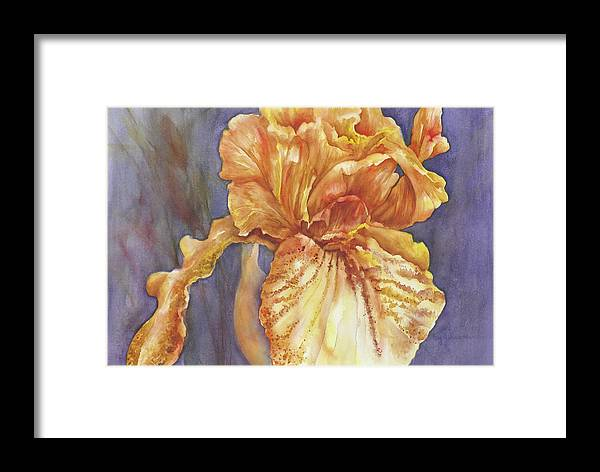 Flower Framed Print featuring the painting Iris by Kay Johnson