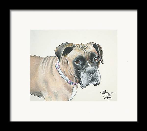 Dog Framed Print featuring the pastel Is Pink Really My Color... by Stephen Duffin