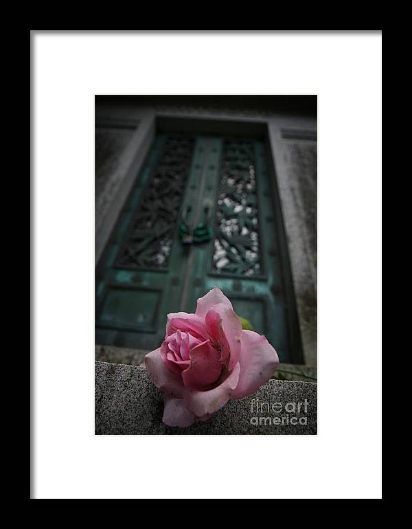 Door Framed Print featuring the photograph Just Beechy by Sid Graves