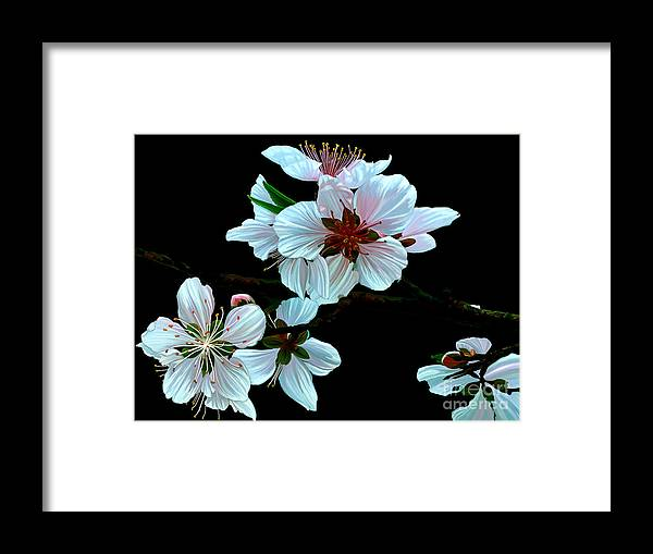Fine Art Framed Print featuring the painting Just Peachy by Patricia Griffin Brett