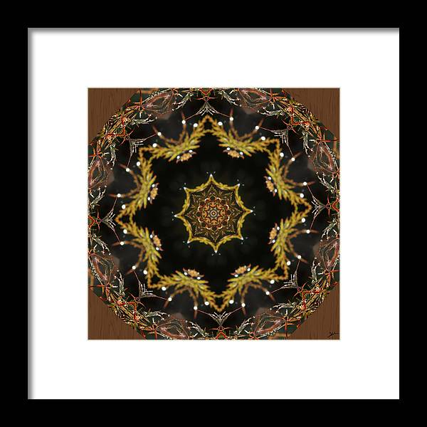 Kaleidoscope Garden Framed Print featuring the digital art Kaleidoscope Garden by Heinz G Mielke