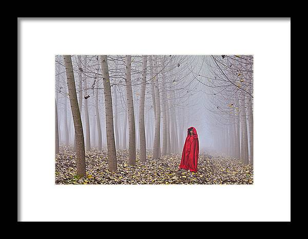 Trees Framed Print featuring the photograph Lady In Red - 7 by Okan YILMAZ