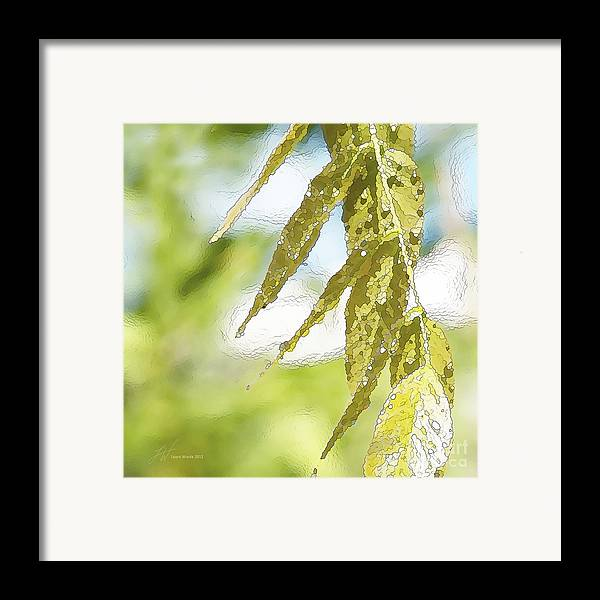 Wisteria Leaves Framed Print featuring the painting Leaves Touching Water by Artist and Photographer Laura Wrede