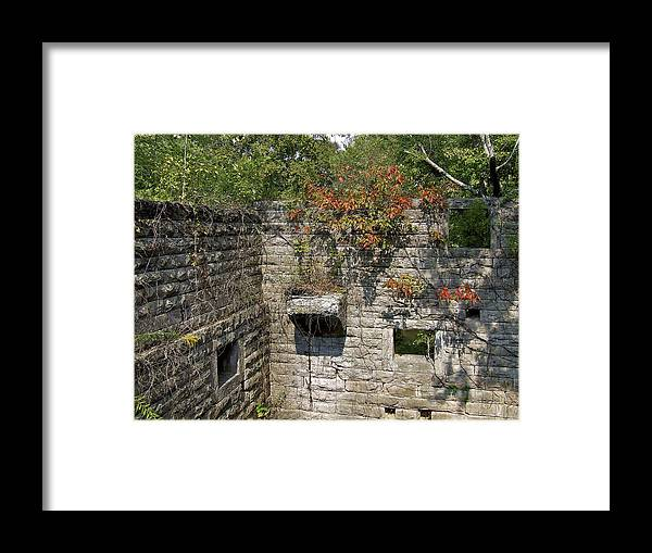 Facades Framed Print featuring the photograph Left Standing by Richard Gregurich
