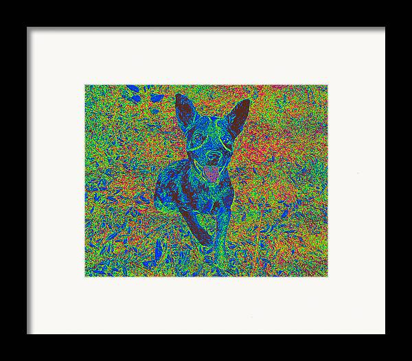 Puppy Framed Print featuring the photograph Let's Play by Camille Reichardt