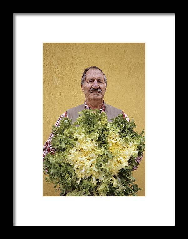 Lactuca Sativa Framed Print featuring the photograph Lettuce Harvest by Carlos Dominguez