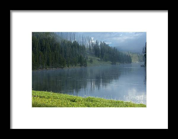 Bronstein Framed Print featuring the photograph Lifting Fog On The Yellowstone by Sandra Bronstein