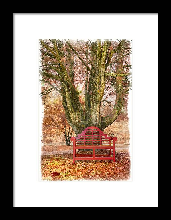 Fine Art Framed Print featuring the photograph Little Red Bench by Debra and Dave Vanderlaan