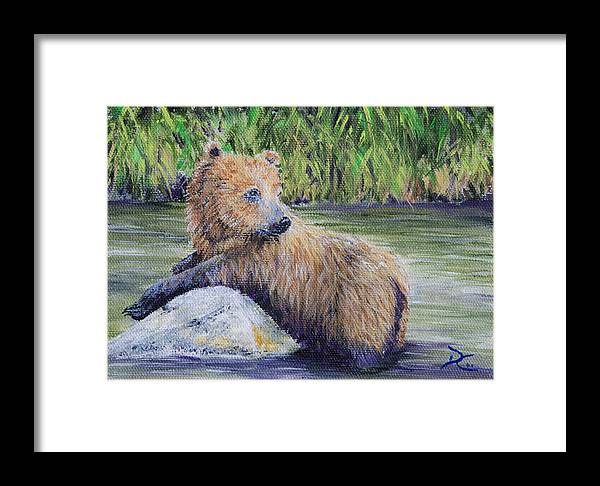 Bear Framed Print featuring the Little Toklat Study by Dee Carpenter