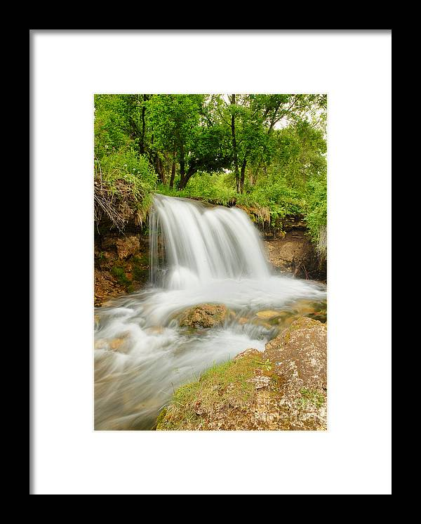 Waterfall Framed Print featuring the photograph Logan Canyon Falls by Dennis Hammer