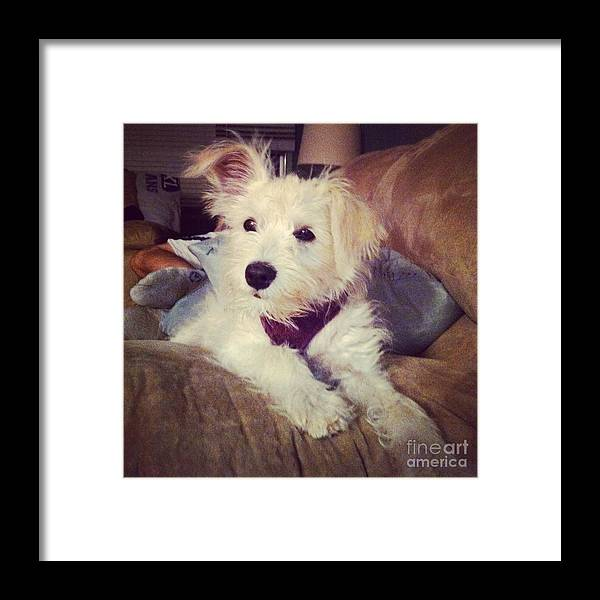 Day Framed Print featuring the photograph Long Day by MaryLee Parker