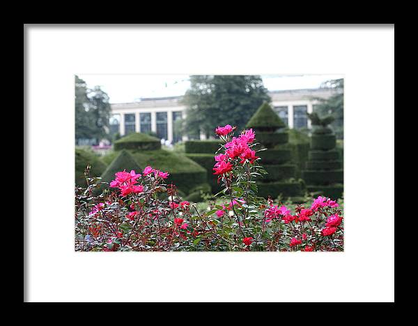 Flower Framed Print featuring the photograph Longwood Gardens by Paul Slebodnick