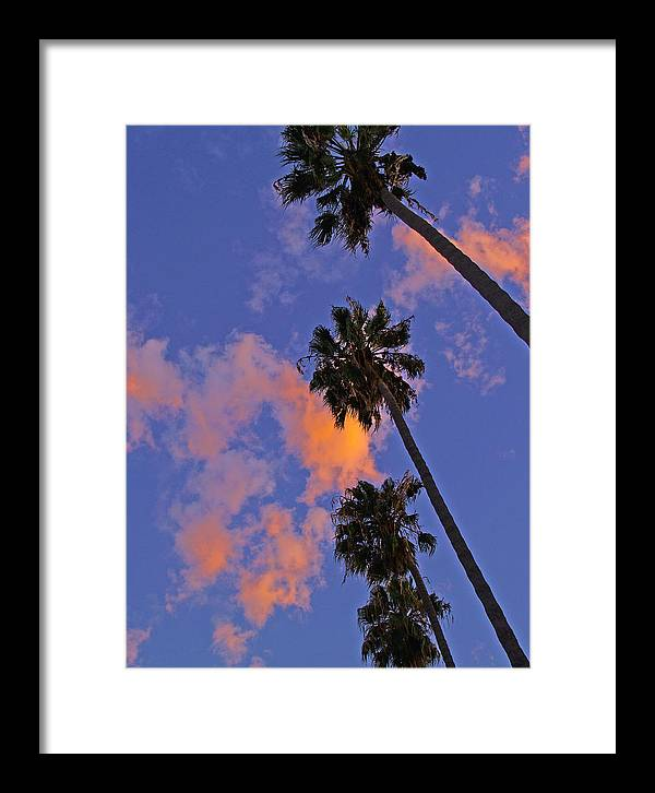 Libra.love.freedom Framed Print featuring the photograph Look Up by D Wash