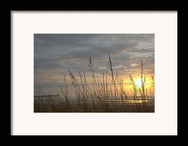 Pier Framed Print featuring the photograph Looking Back by Lynn Davenport