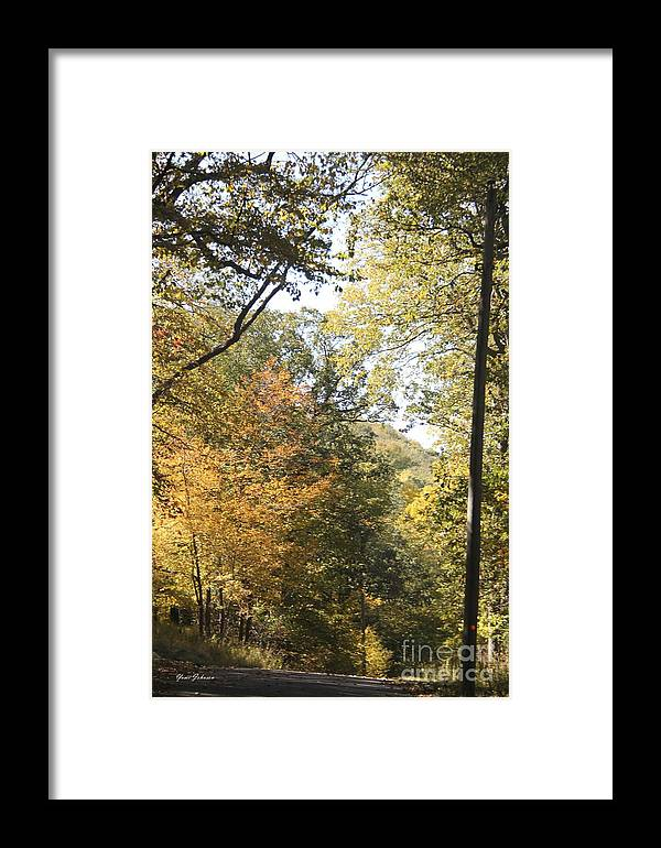 Fall Framed Print featuring the photograph Lost In The Fall by Yumi Johnson