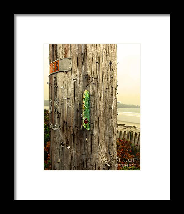 Fishing Framed Print featuring the photograph Lost Lure by Patricia Januszkiewicz