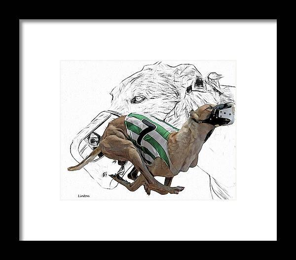 Grayhound Framed Print featuring the digital art Lucky Seven 2 by Larry Linton