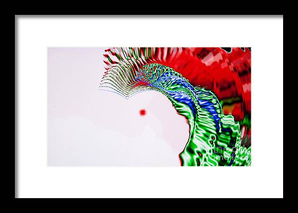 Abstract Framed Print featuring the photograph Macaw by Tashia Peterman