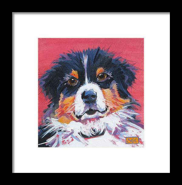 Australian Shepherd Puppy Framed Print featuring the painting Macho by Sarah Gayle Carter