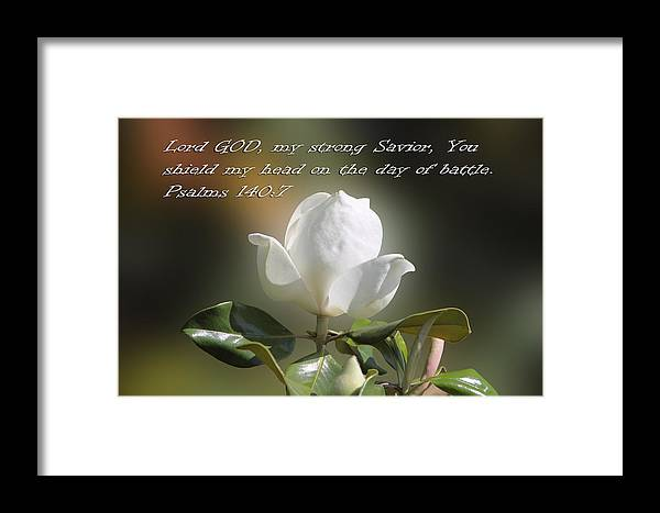 Scripture Framed Print featuring the photograph Magnolia Ps. 140v7 by Linda Phelps