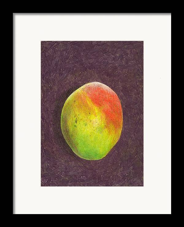 Mango Framed Print featuring the drawing Mango On Plum by Steve Asbell