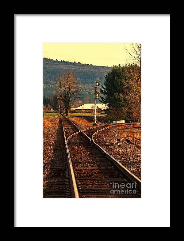 Train Framed Print featuring the photograph Matsqui Taintracks by Dawn Harris