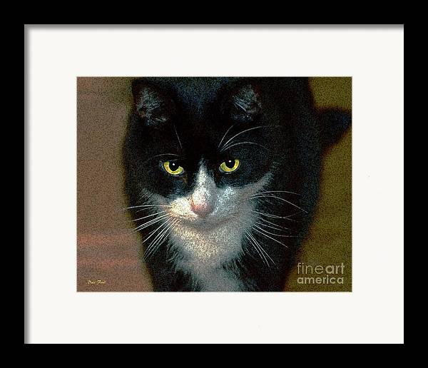 Cats Framed Print featuring the digital art Max by Dale  Ford