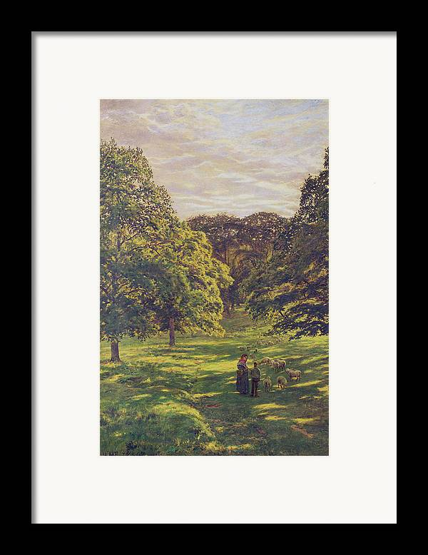 Woods; Shadows; Trees Framed Print featuring the painting Meadow Scene by John William Buxton Knight
