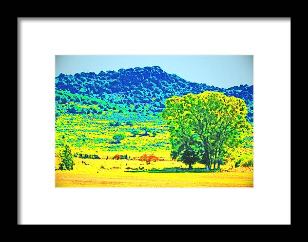 Expressive Framed Print featuring the photograph Meadows And The Cedar Breaks by Lenore Senior