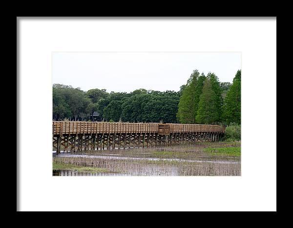 Park Framed Print featuring the photograph Medard Park Boardwalk Fishing Pier by April Wietrecki Green