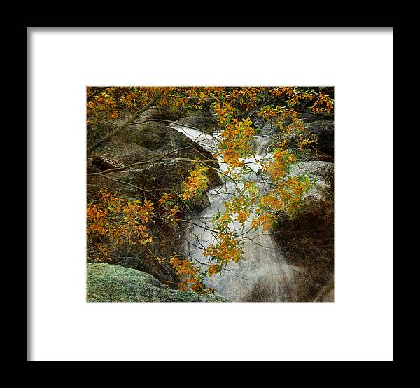 Water Framed Print featuring the photograph Memories by Tim Reaves