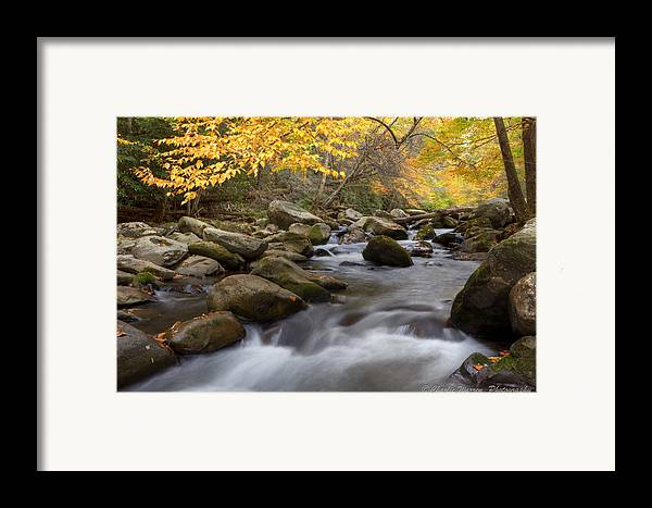 Little River Framed Print featuring the photograph Mid Stream by Charles Warren