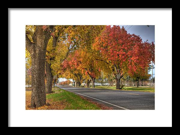 Fall Framed Print featuring the photograph Midway by Ren Alber