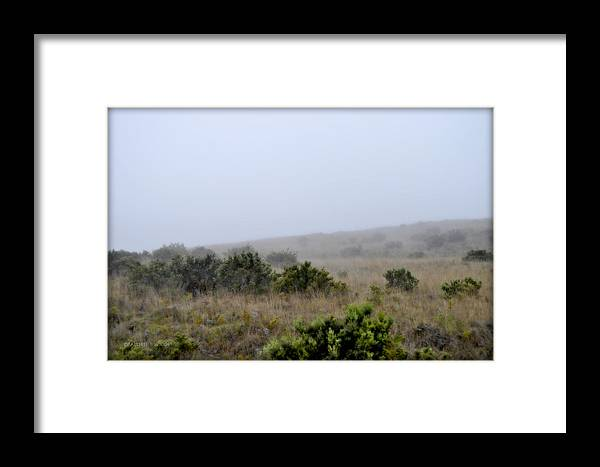 Interior Design Framed Print featuring the photograph Mists Between The Hills by Paulette B Wright