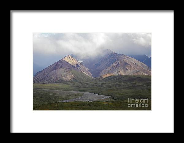 Denali National Park Framed Print featuring the photograph Moods Of Denali by Gary Suddath