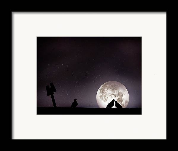 Horizontal Framed Print featuring the photograph Moon With Love Pigeon by Mhd Hamwi