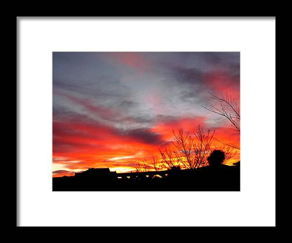 Morning Glory Framed Print featuring the photograph Morning Glory by Joyce Woodhouse