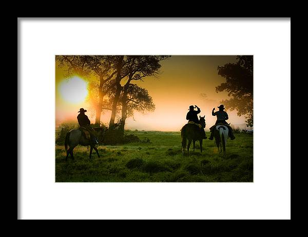 Cowboys Framed Print featuring the photograph Morning Ride by Toni Hopper
