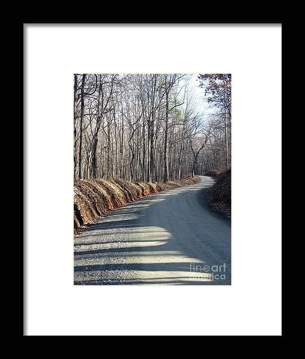 Shadow And Light Framed Print featuring the photograph Morning Shadows On The Forest Road by Ausra Huntington nee Paulauskaite
