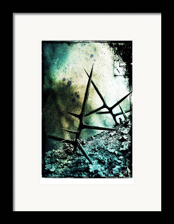 War Framed Print featuring the photograph Mortal Combat by Judi Bagwell