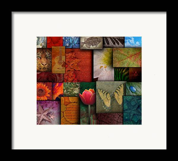 Abstract Framed Print featuring the photograph Mosaic Earth Tone Nature Rough Patterns by Angela Waye