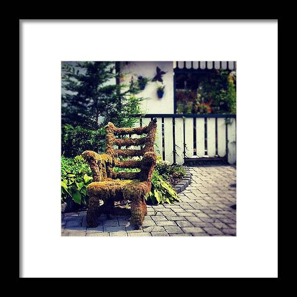 Moss Covered Chair #nature #chair Framed Print by Sascha Buchholz