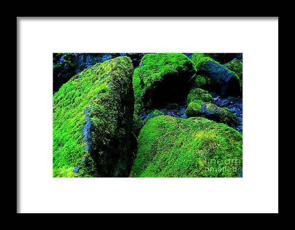 Rocks Framed Print featuring the photograph Moss In Blue by Michael Wyatt