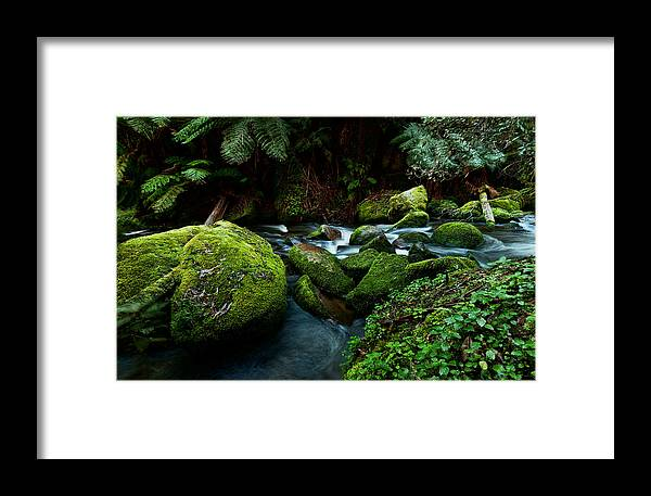 Australia Framed Print featuring the photograph Moss Rocks by Heather Thorning