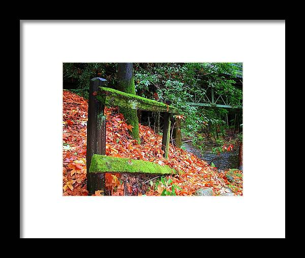 Big Sur Framed Print featuring the photograph Mossy Fence by Rick Mutaw