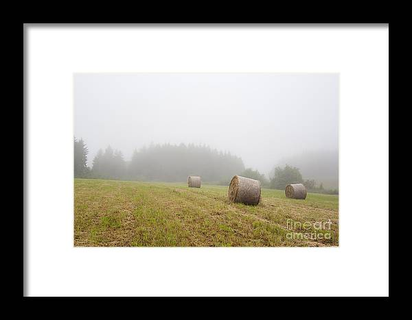 Fog Framed Print featuring the photograph Mown Grass by Michal Boubin