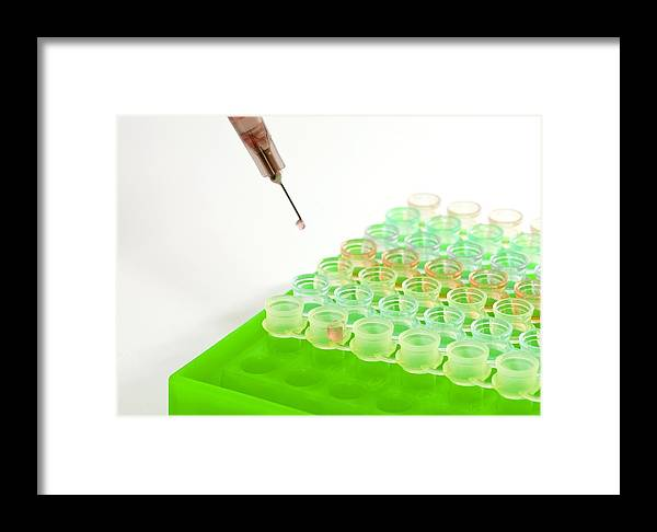 Chemical Framed Print featuring the photograph Multiwell Sample Tray by Photostock-israel