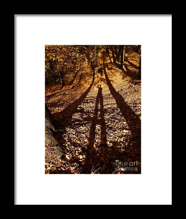 Shadow Framed Print featuring the photograph My Shadow in the Forest by Amalia Suruceanu