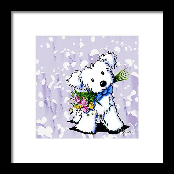 Havanese Framed Print featuring the drawing My Sweet Boy by Kim Niles