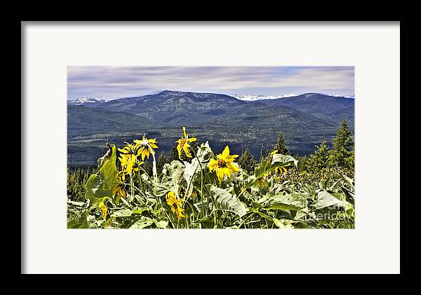 Montana Landscapes Photographs Framed Print featuring the photograph Nature Dance by Janie Johnson